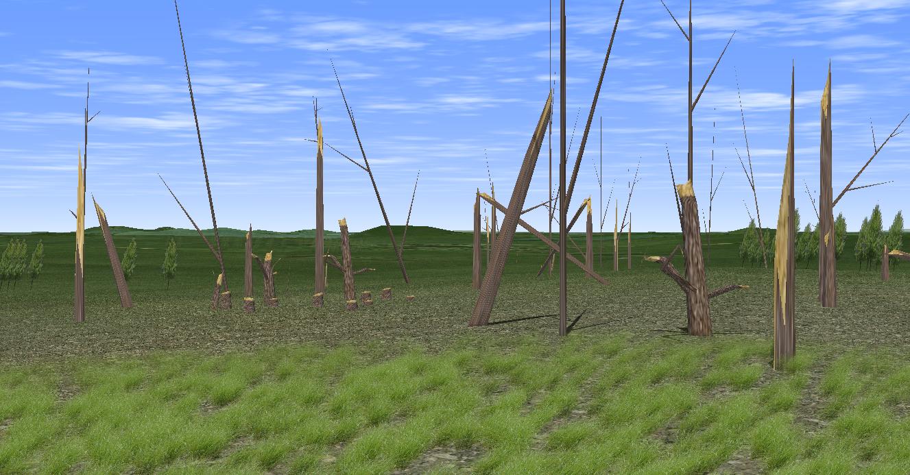 [Image: Trees_Damaged.jpg]